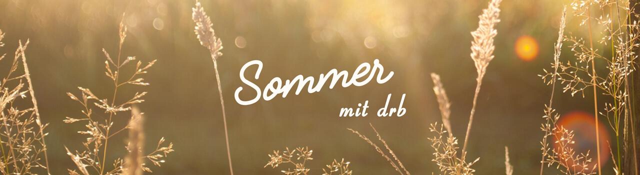 Летний лагерь sommer.drb.