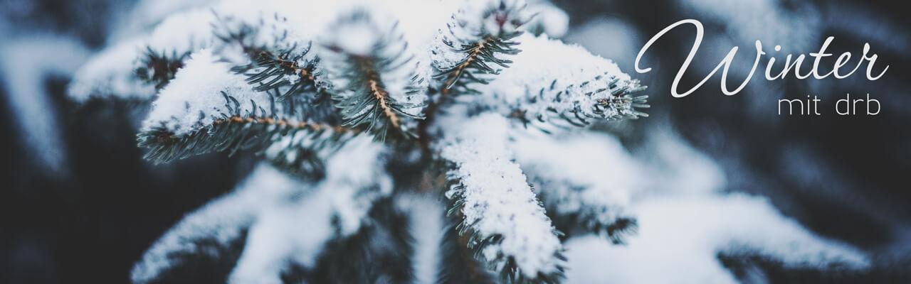 Как фанатам немецкого языка справиться с холодом декабря.