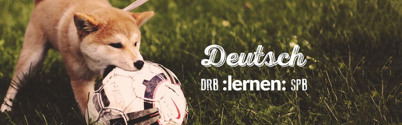 Как учить немецкий язык, обсуждая футбольные матчи.