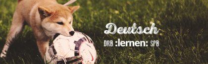 Как FIFA World Cup помог нам в изучении немецкого: пять шуток из твитов немцев.